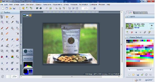Ubah File RAW Menjadi JPG Dengan Chasys Draw IES, Ada Editor Juga