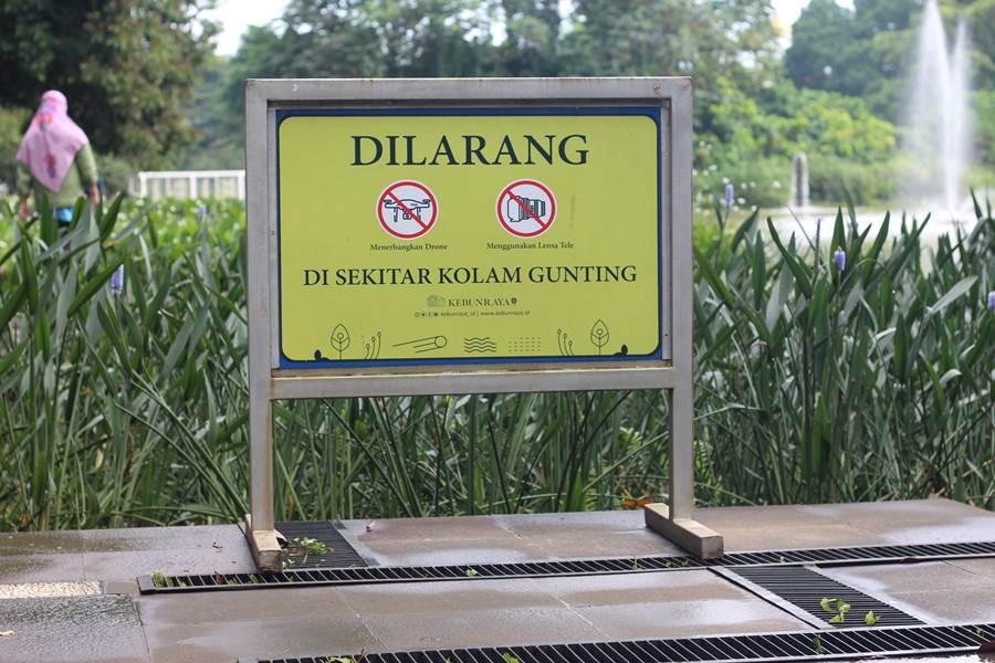 Dilarang Menerbangkan Drone Di Kebun Raya Bogor 2